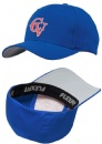 Printed logo golf hat